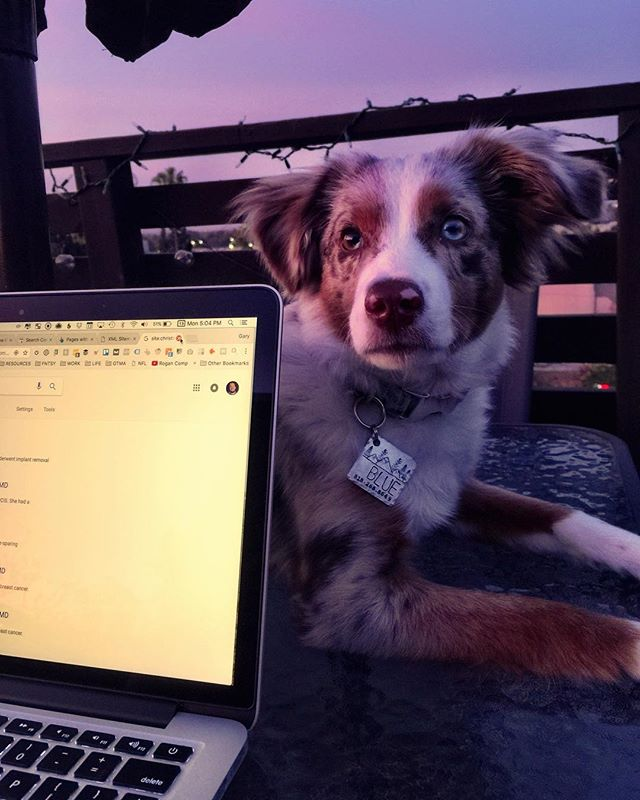 my co-worker, #blue - from Instagram